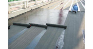 Search Results For Category New Roofing Construction